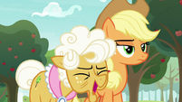Goldie Delicious laughs at Applejack S9E10