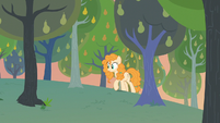 Pear Butter discovers field with no weeds S7E13