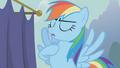 "Rainbow Dash ""that's MY job"" S1E06.png"