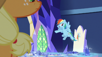 "Rainbow Dash ""the real problem here"" S8E21"