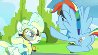 Rainbow Dash --you were awesome!-- S6E24