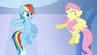 "Rainbow Dash and Fluttershy ""chaaa!"" S03E12"