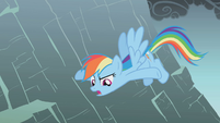 Rainbow says Fluttershy could just fly up S1E07