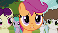"Scootaloo ""you're not mad"" S4E15.png"