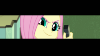 Screen narrows around Fluttershy's face EGDS10