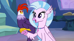 "Silverstream ""cockatrices are really friendly"" S9E11"