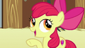 """Apple Bloom """"nopony starts out perfect"""" S6E23.png"""