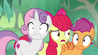 "Apple Bloom ""you all heard that, right?"" S9E22"