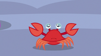 Crab looking sad S6E22