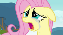 Crying Fluttershy S2E22