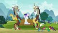 "Discord ""it's for Fluttershy!"" S7E12.png"