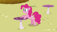 Pinkie Pie putting her hooves on the table S3E03
