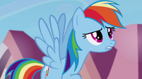"Rainbow Dash ""only mentioned it about fifteen times"" S4E25"