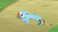 Rainbow Dash Pondering 3 S2E16
