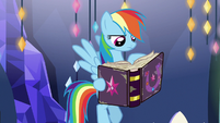Rainbow Dash looks through the journal S7E14