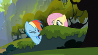 Rainbow Dash winks at Applejack 2 S03E09