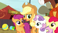 Applejack asks Sweetie Belle what she's talking about S5E6.png