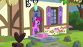 Berryshine looks at the delivered package S5E19.png