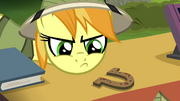 Daring Do collector sneers at horseshoe S4E22