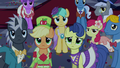 Gala ponies not laughing S5E7.png
