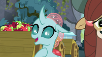 Ocellus -I can make friends with it- S8E2