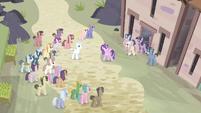 Ponis reuniéndose EMC-P2
