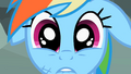 "Rainbow Dash ""Forever!"" S2E07.png"