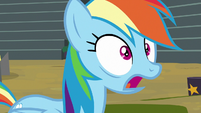 "Rainbow Dash ""no way!"" S8E20"