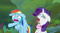 Rainbow Dash and Rarity gasping for air S8E17