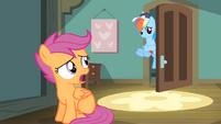 Rainbow Dash at the door S4E05