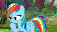 Rainbow Dash continues to think S8E17