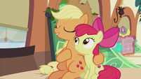 Applejack -the warmth shared on that fateful night- S5E20