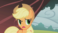 Applejack worried S01E08.png