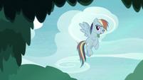 "Fake Rainbow Dash ""bummer"" S8E13"