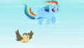 Rainbow Dash Owlowiscious 2 S02E07.png