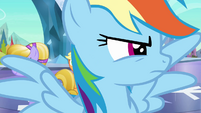 Rainbow Dash looks to the right S3E2