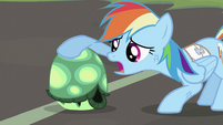 Rainbow Dash petting Tank S2E07
