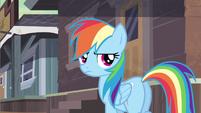 Rainbow Dash that card S2E14