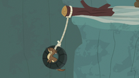 Sea otter swinging from the tire swing S7E5