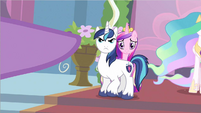 Shining Armor protecting Princess Cadance S2E25