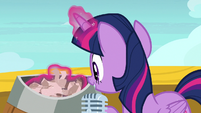 Twilight Sparkle shuffling the raffle papers S7E22