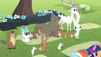 Animals cheering for Fluttershy S4E14