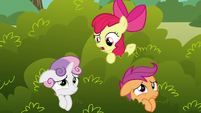 Apple Bloom --what do you think that griffon wants--- S6E19