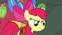 Apple Bloom glaring at Applejack S4E09