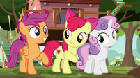 Apple Bloom introduces herself and her friends S8E12