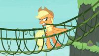 Applejack tying her vines together S8E9