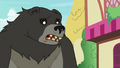 Bear-Thorax also confused S7E15.png