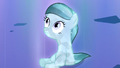 Crystal Filly S3E12.png