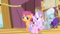Diamond Tiara '...a Pegasus pony at your age' S4E05