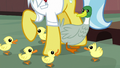 Duck and ducklings around Dr. Fauna's hooves S7E5.png